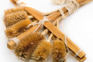 Thistle carder detail